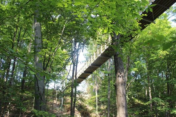The Grand Ravines Suspension Bridge