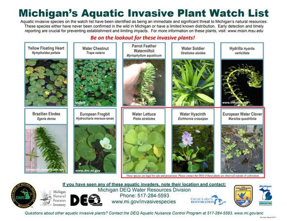 invasiveplants